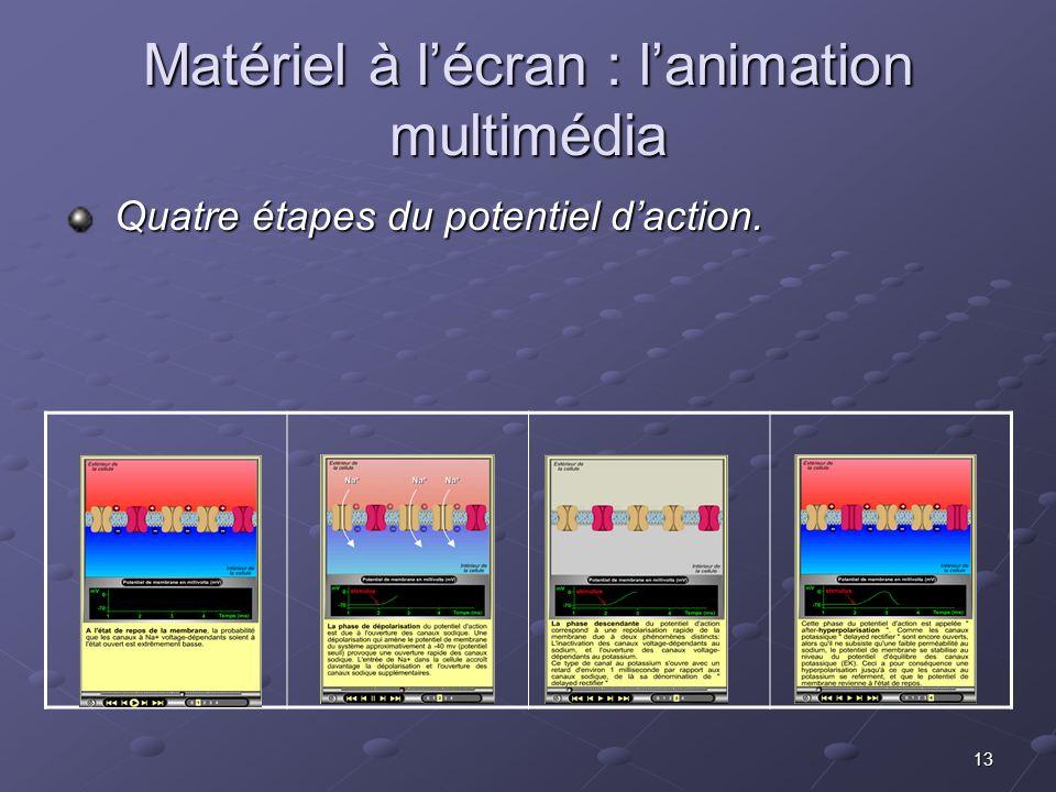 13 Matériel à lécran : lanimation multimédia Quatre étapes du potentiel daction. Quatre étapes du potentiel daction.