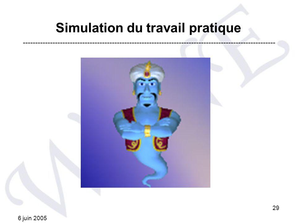 6 juin 2005 29 Simulation du travail pratique ------------------------------------------------------------------------------------------------------