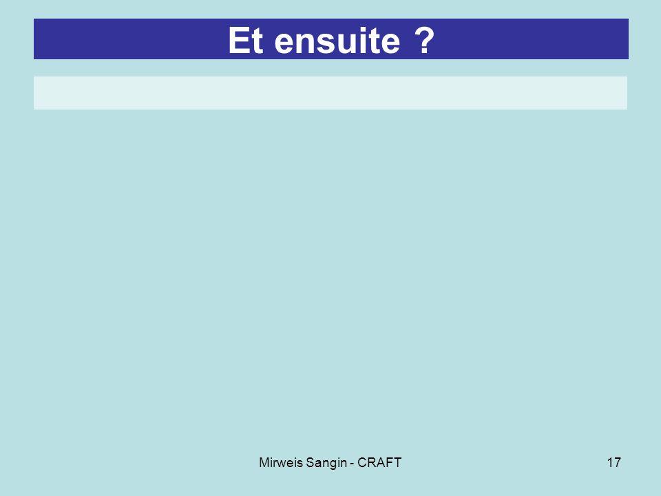 Mirweis Sangin - CRAFT17 Et ensuite ?