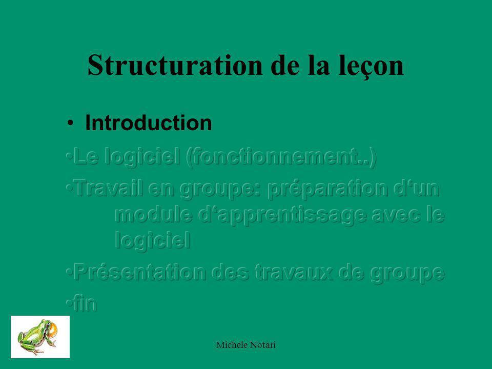 Michele Notari Introduction Choix du thème (intérêt pour un étudiant STAF) Encadrage de la situation dapprentissage Les auditeurs à ma présentation
