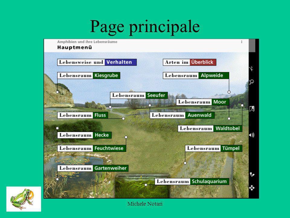 Michele Notari les amphibiens et leur espace vital (page daccueil)