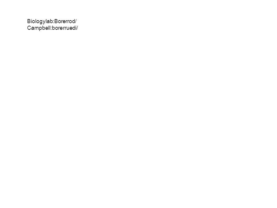 Biologylab:Borerrod/ Campbell:borerruedi/