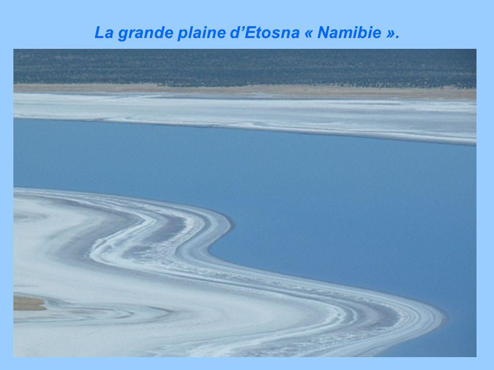 Le St Laurent est le vestige de la mer Champlain « Canada ».