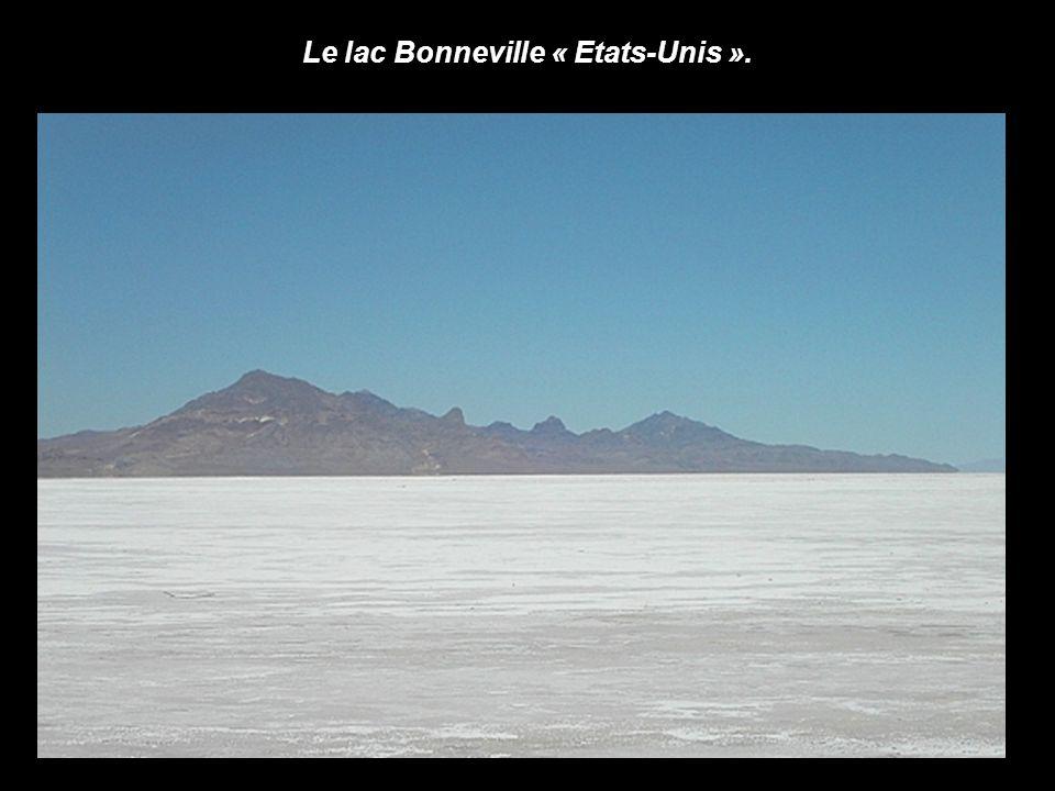 Salar de Uyuni, désert blanc « Bolivie ».