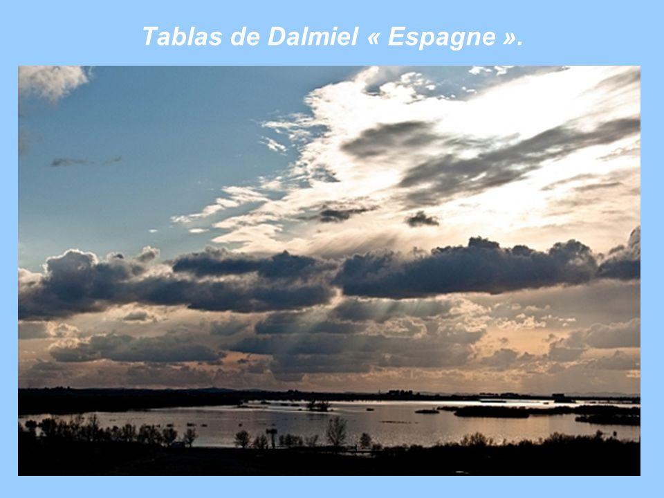 Tablas de Dalmiel « Espagne ».