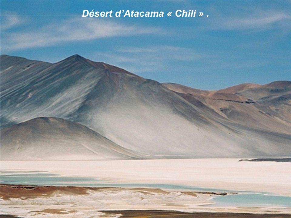 Désert dAtacama « Chili ».