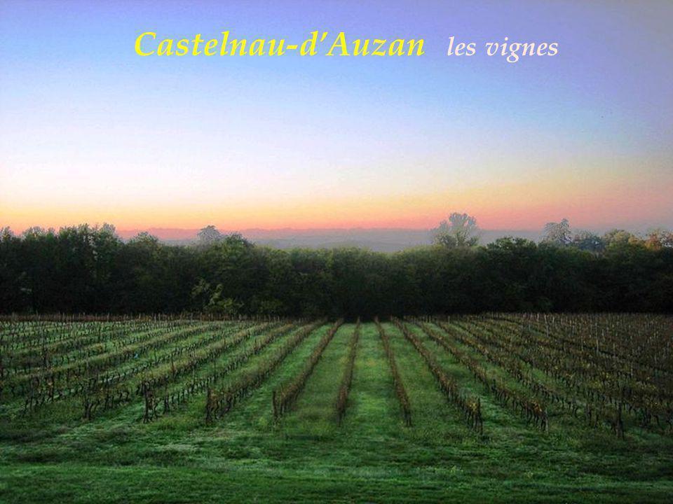 Castelnau-dAuzan létang
