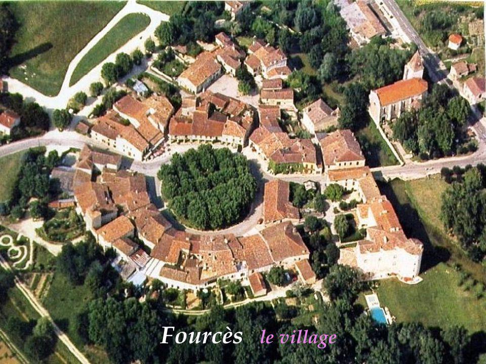 Castelnau-dAuzan les vignes
