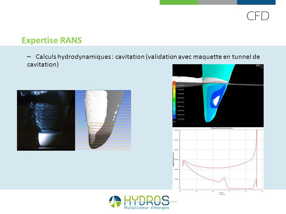 CFD Expertise RANS –Calculs hydrodynamiques : cavitation (validation avec maquette en tunnel de cavitation)