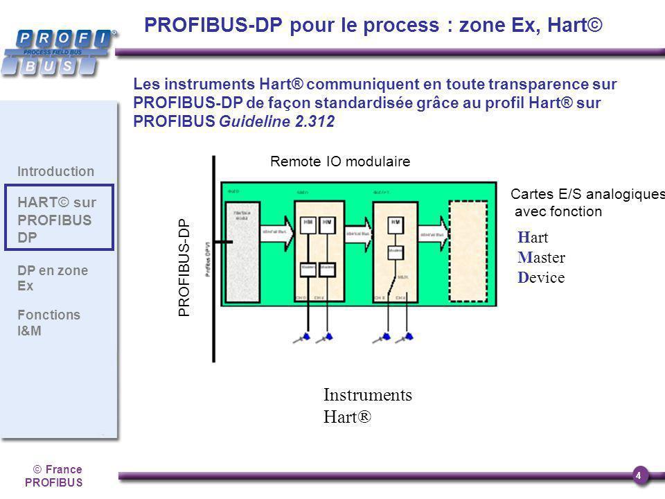 ©France PROFIBUS 4 Introduction HART© sur PROFIBUS DP DP en zone Ex Fonctions I&M Les instruments Hart® communiquent en toute transparence sur PROFIBU