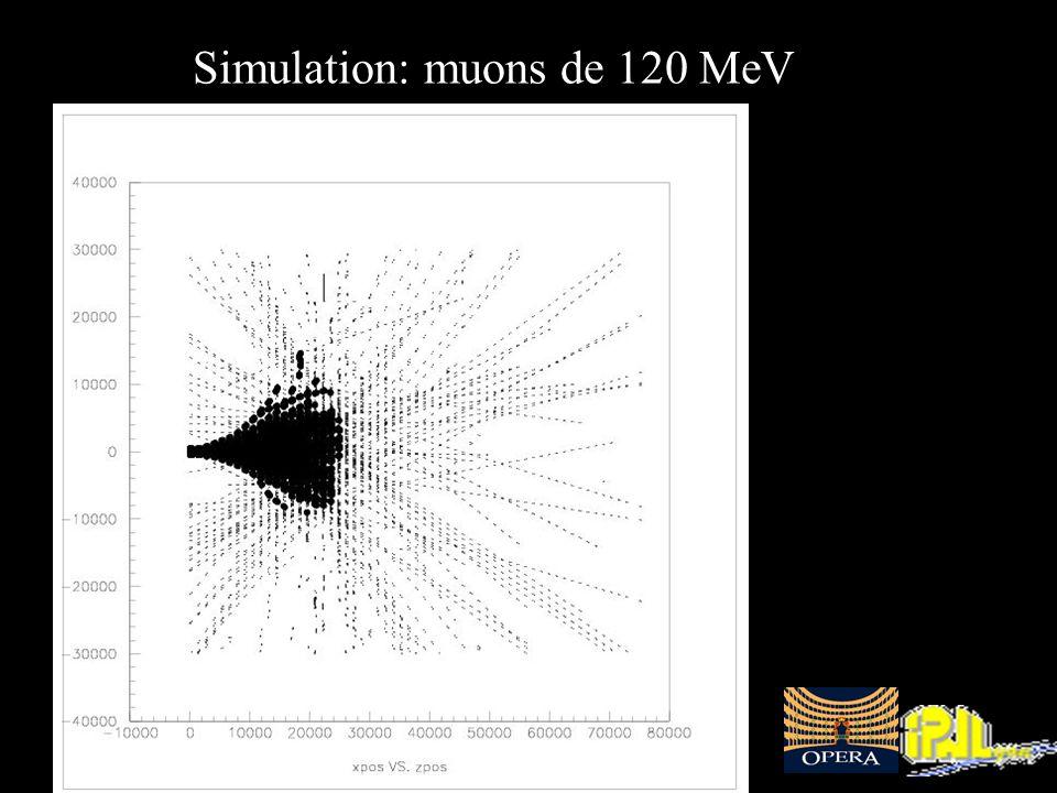 Journées Jeunes Chercheurs 2003, La Roche-en-Ardennes - 20 /16 - Perrine Royole-Degieux Simulation: muons de 120 MeV
