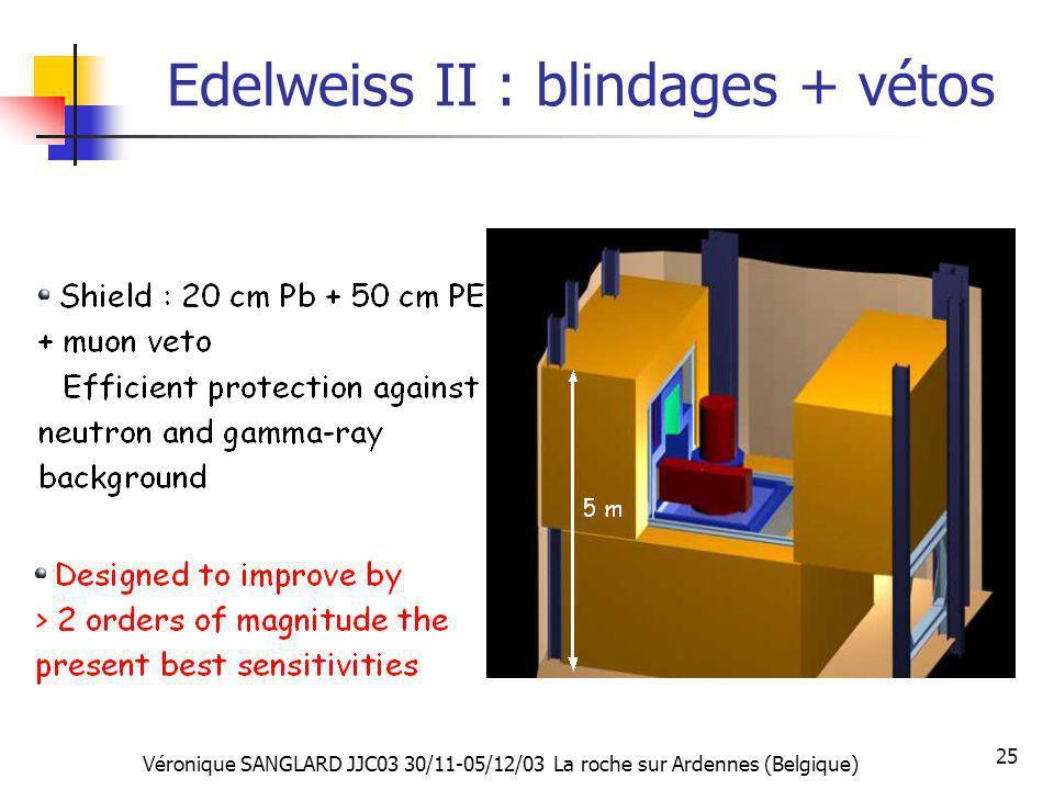Véronique SANGLARD JJC03 30/11-05/12/03 La roche sur Ardennes (Belgique) 25 Edelweiss II : blindages + vétos