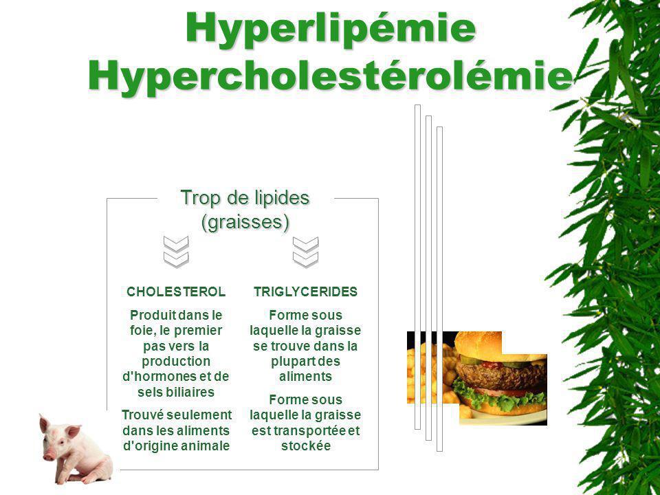 Hyperlipémie Hypercholestérolémie Trop de lipides (graisses) CHOLESTEROL Produit dans le foie, le premier pas vers la production d'hormones et de sels