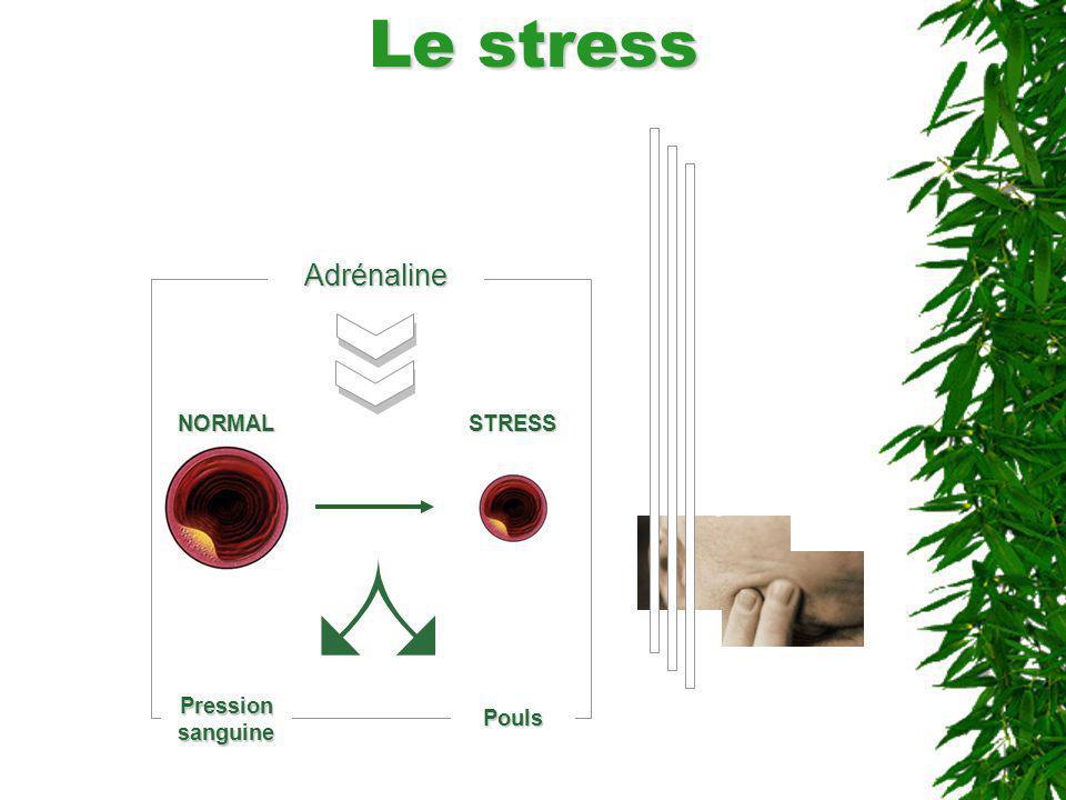 Le stress Adrénaline NORMALSTRESS Pression sanguine Pouls