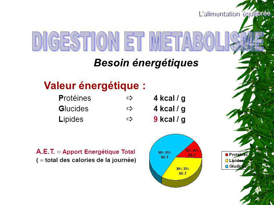 Besoin énergétiques Valeur énergétique : Protéines 4 kcal / g Glucides 4 kcal / g Lipides 9 kcal / g A.E.T. Apport Energétique Total ( total des calor