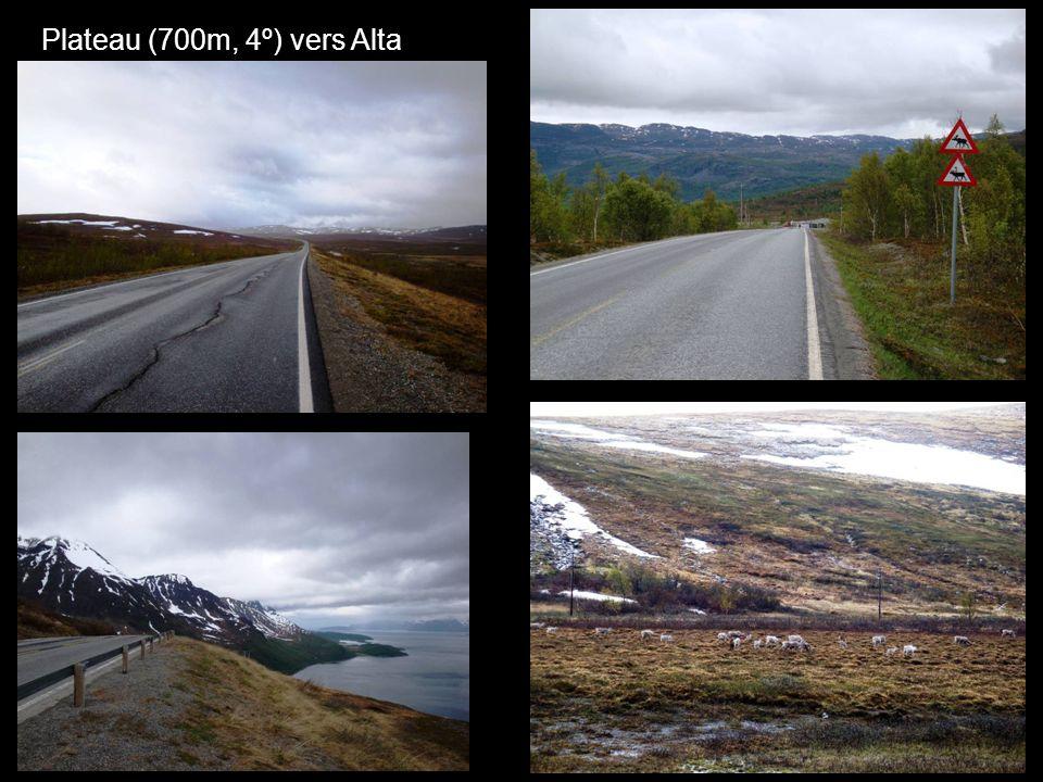 Plateau (700m, 4º) vers Alta