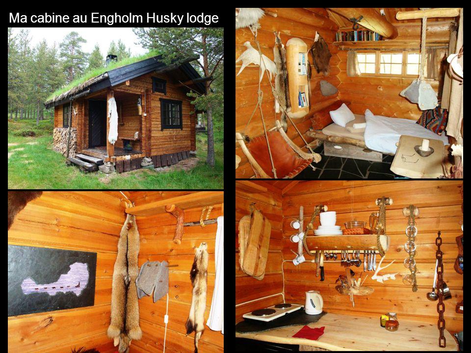 Ma cabine au Engholm Husky lodge