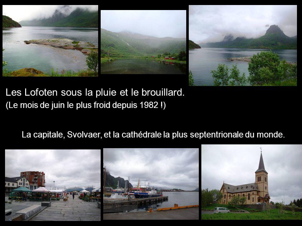 Les Lofoten sous la pluie et le brouillard.