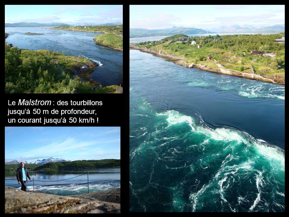 Le Malstrom : des tourbillons jusquà 50 m de profondeur, un courant jusquà 50 km/h !