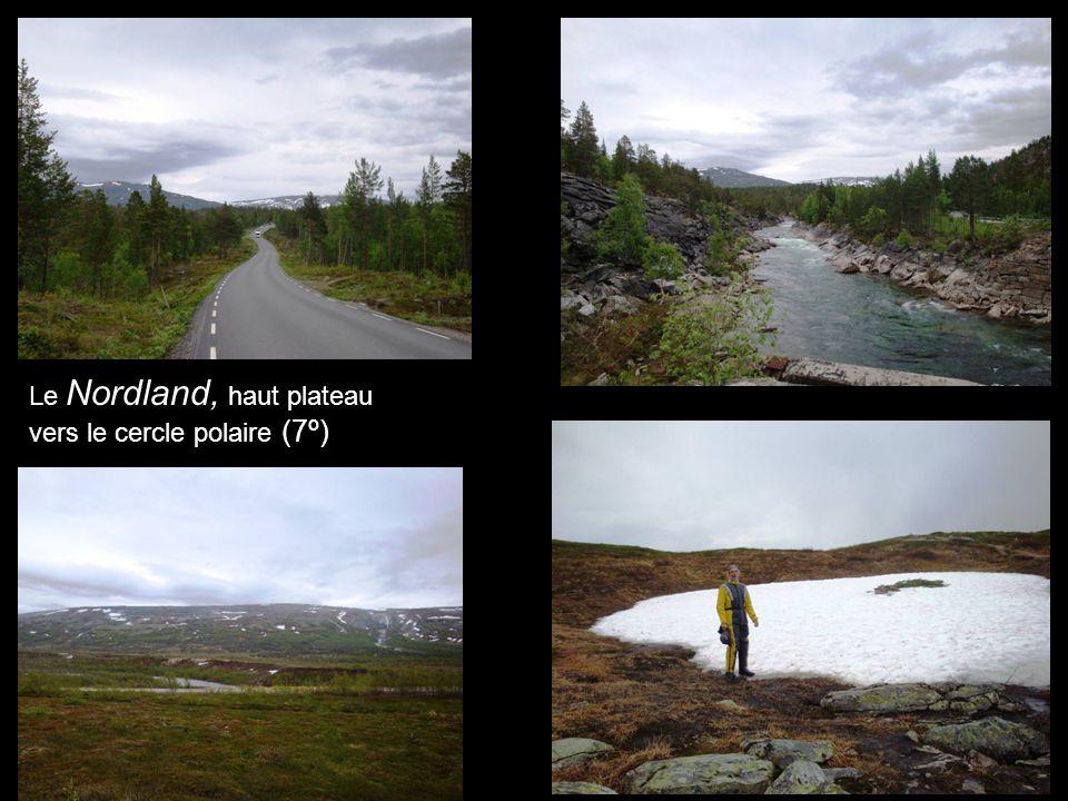 Le Nordland, haut plateau vers le cercle polaire (7º)