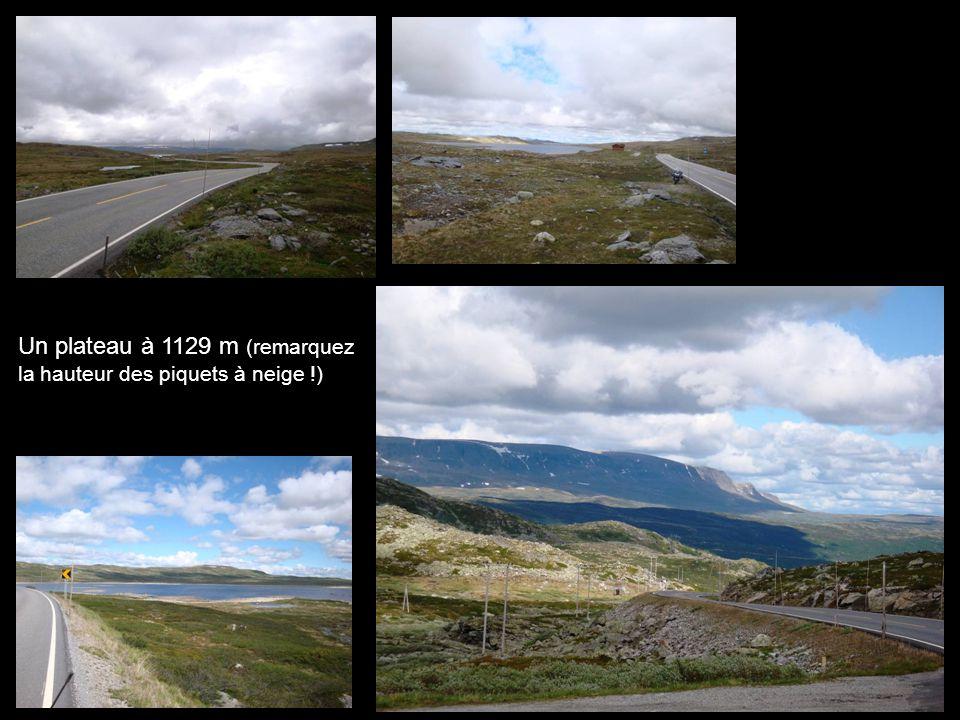 Un plateau à 1129 m (remarquez la hauteur des piquets à neige !)