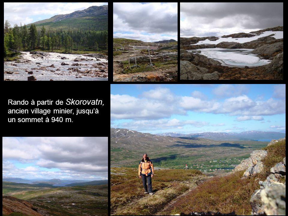 Rando à partir de Skorovatn, ancien village minier, jusquà un sommet à 940 m.