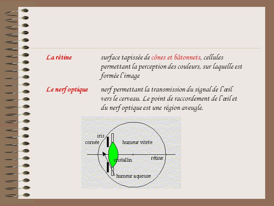 Lœil est constitué de plusieurs éléments optiques: La cornéedioptre sphérique dentrée séparant lair du milieu interne, lhumeur dindice optique proche