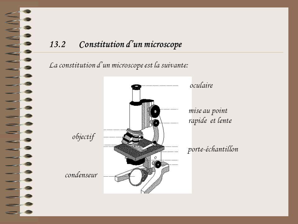 13.2Constitution dun microscope La constitution dun microscope est la suivante: oculaire mise au point rapide et lente objectif condenseur porte-échan