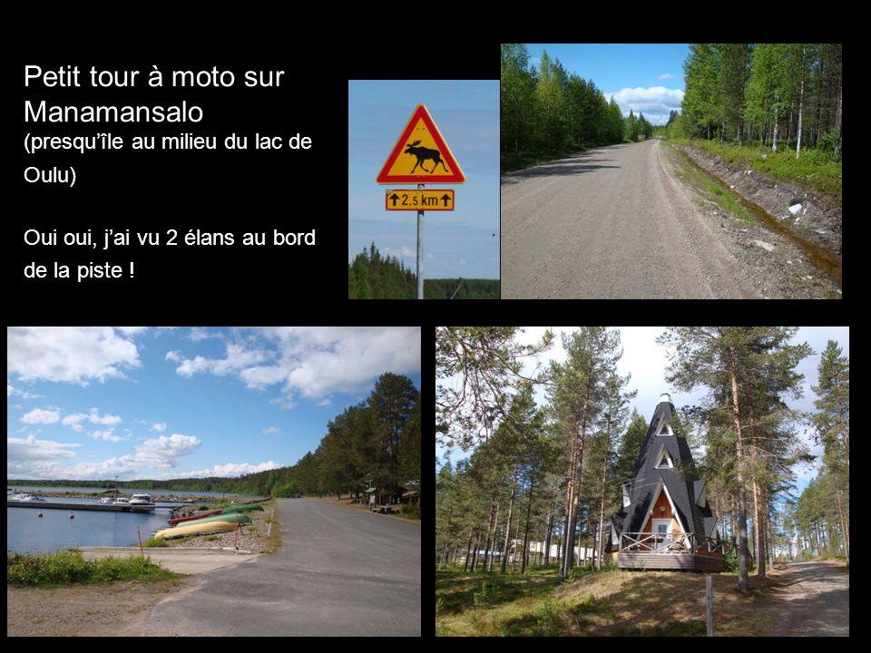 Petit tour à moto sur Manamansalo (presquîle au milieu du lac de Oulu) Oui oui, jai vu 2 élans au bord de la piste !