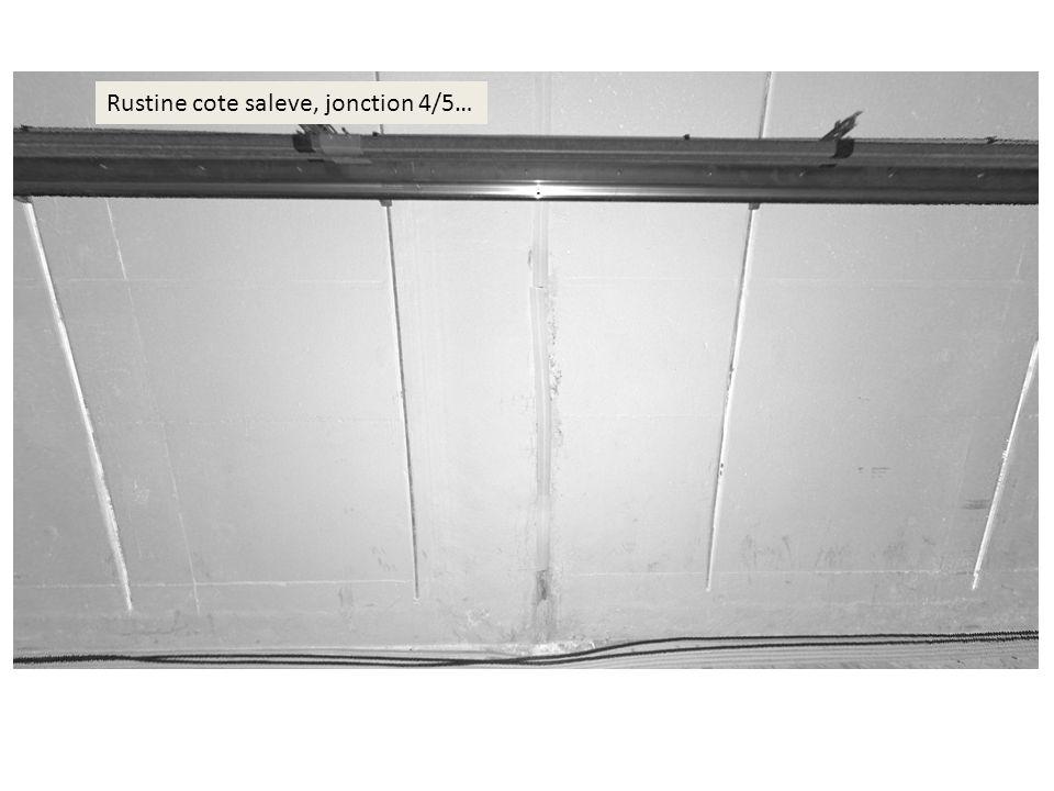 Rustine cote saleve, jonction 4/5…