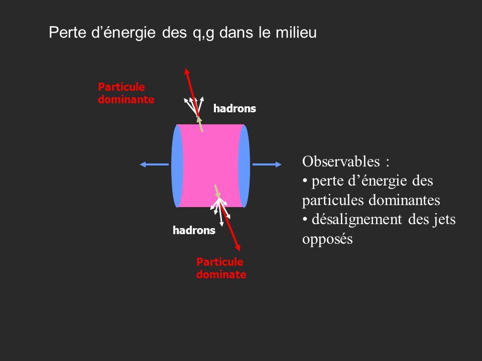 Grenoble 5 Juin 2003Yves Schutz34 Perte dénergie des q,g dans le milieu hadrons Particule dominate hadrons Particule dominante Observables : perte dén