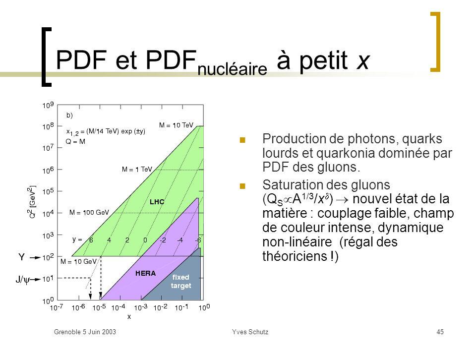 Grenoble 5 Juin 2003Yves Schutz45 PDF et PDF nucléaire à petit x Production de photons, quarks lourds et quarkonia dominée par PDF des gluons. Saturat