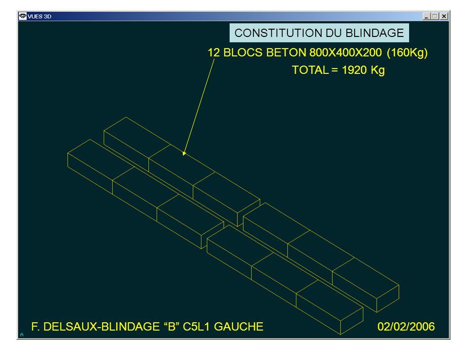 F. DELSAUX-BLINDAGE B C5L1 GAUCHE02/02/2006 SECTION -190824 DE LIP1