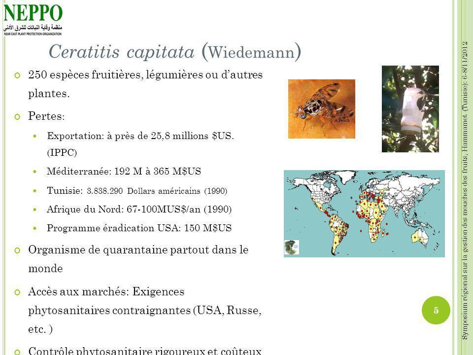 Symposium régional sur la gestion des mouches des fruits, Hammamet (Tunisie): 6-8/11/2012 Ceratitis capitata ( Wiedemann ) 250 espèces fruitières, lég