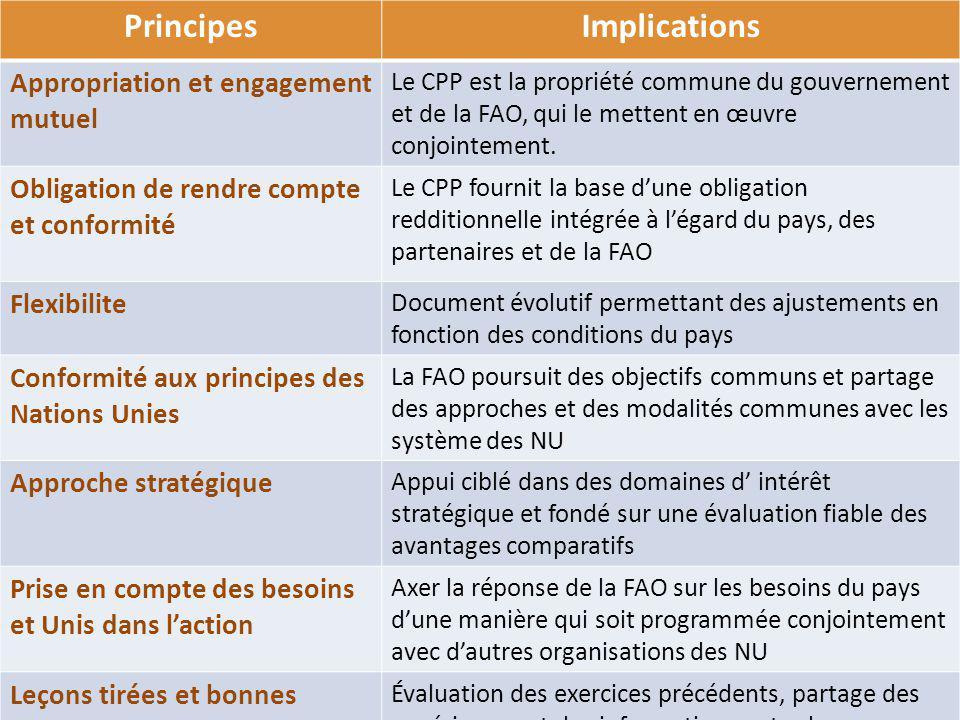 PrincipesImplications Appropriation et engagement mutuel Le CPP est la propriété commune du gouvernement et de la FAO, qui le mettent en œuvre conjoin