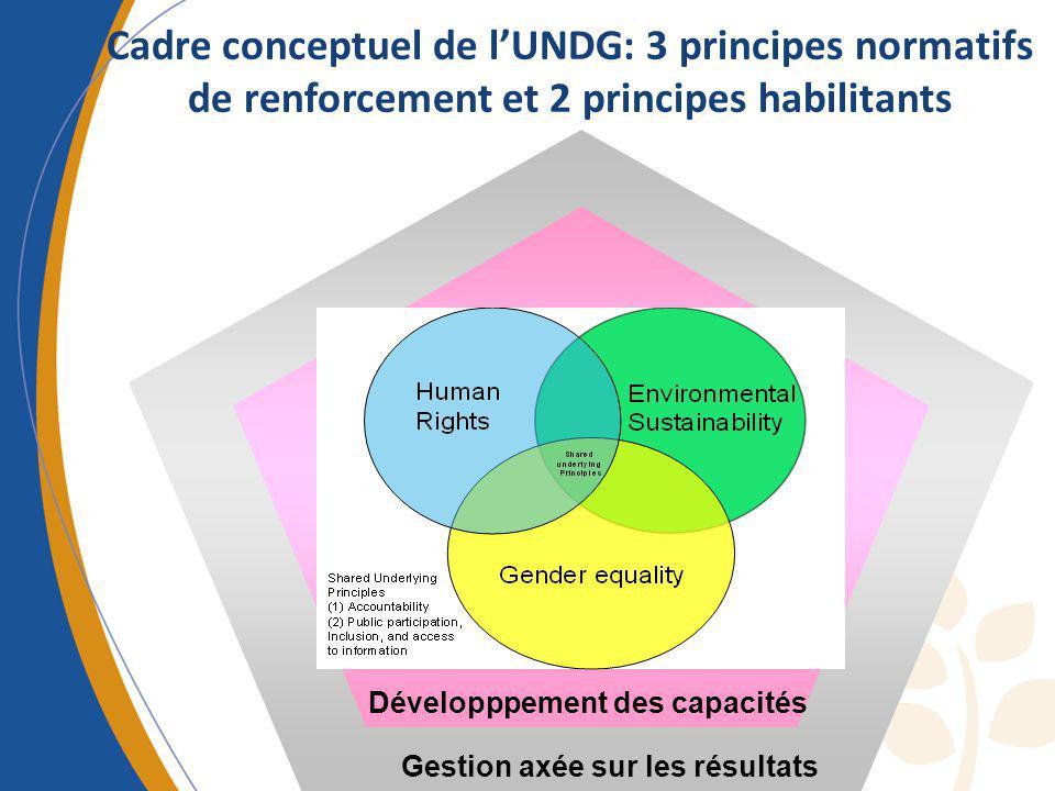 Cadre conceptuel de lUNDG: 3 principes normatifs de renforcement et 2 principes habilitants Gestion axée sur les résultats Développpement des capacité