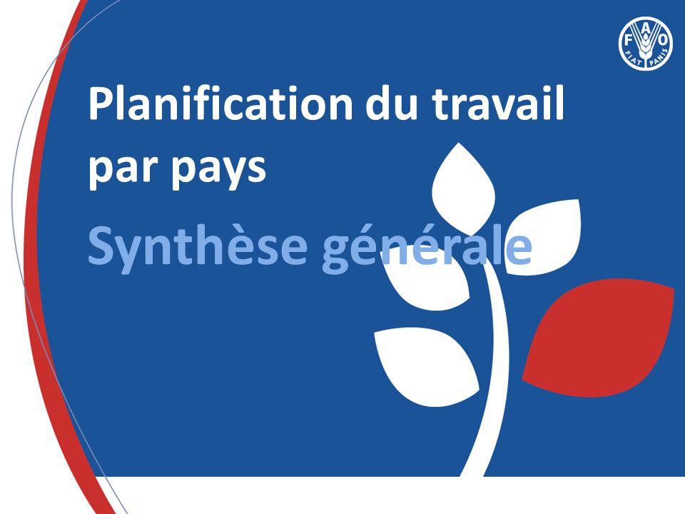 Planification du travail par pays Synthèse générale