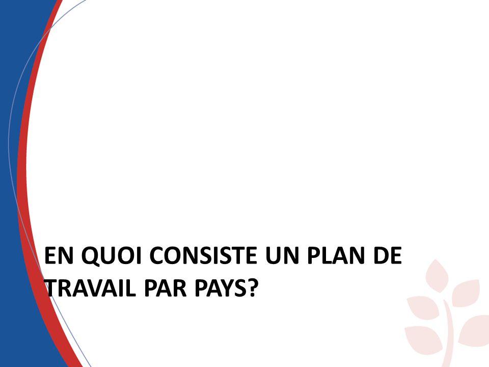 EN QUOI CONSISTE UN PLAN DE TRAVAIL PAR PAYS?