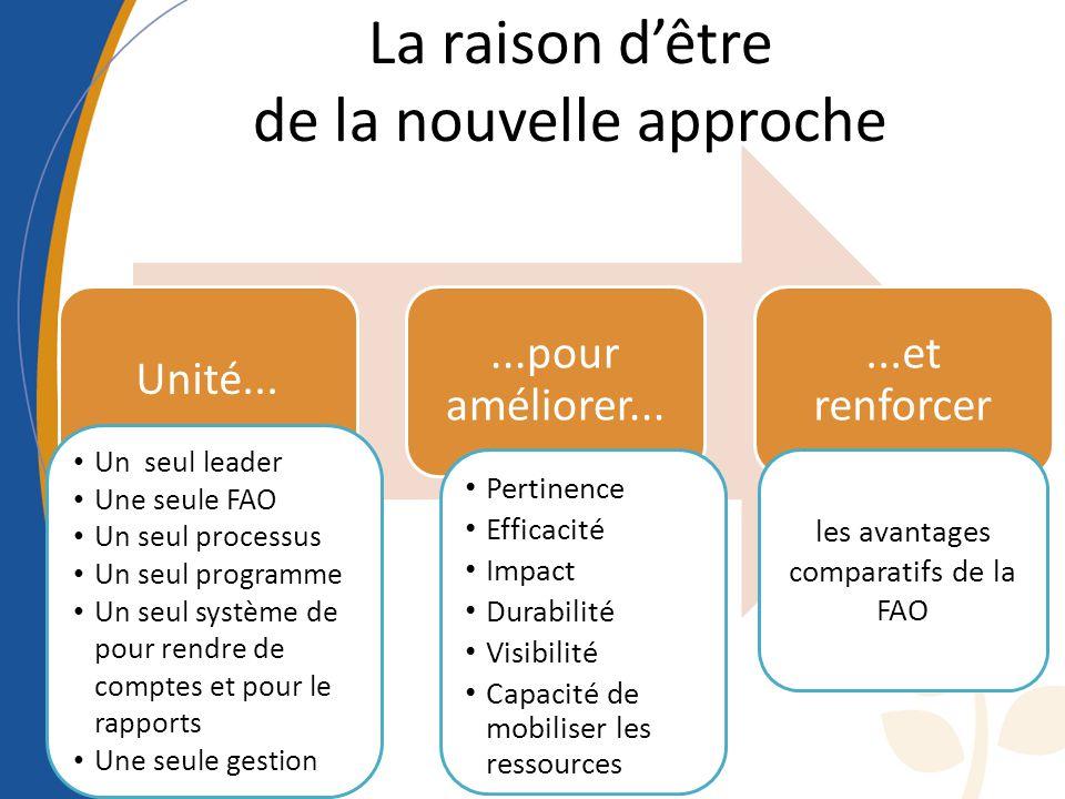 La raison dêtre de la nouvelle approche Unité......pour améliorer......et renforcer Un seul leader Une seule FAO Un seul processus Un seul programme Un seul système de pour rendre de comptes et pour le rapports Une seule gestion Pertinence Efficacité Impact Durabilité Visibilité Capacité de mobiliser les ressources les avantages comparatifs de la FAO