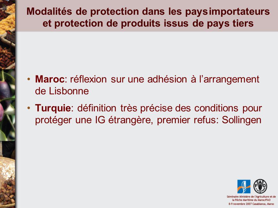 Modalités de protection dans les pays importateurs et protection de produits issus de pays tiers Maroc: réflexion sur une adhésion à larrangement de Lisbonne Turquie: définition très précise des conditions pour protéger une IG étrangère, premier refus: Sollingen