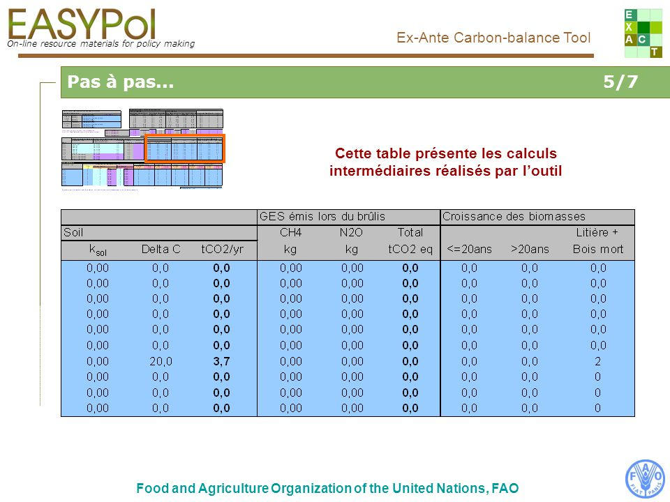 On-line resource materials for policy making Ex-Ante Carbon-balance Tool Food and Agriculture Organization of the United Nations, FAO Cette table présente les calculs intermédiaires réalisés par loutil Pas à pas...5/7