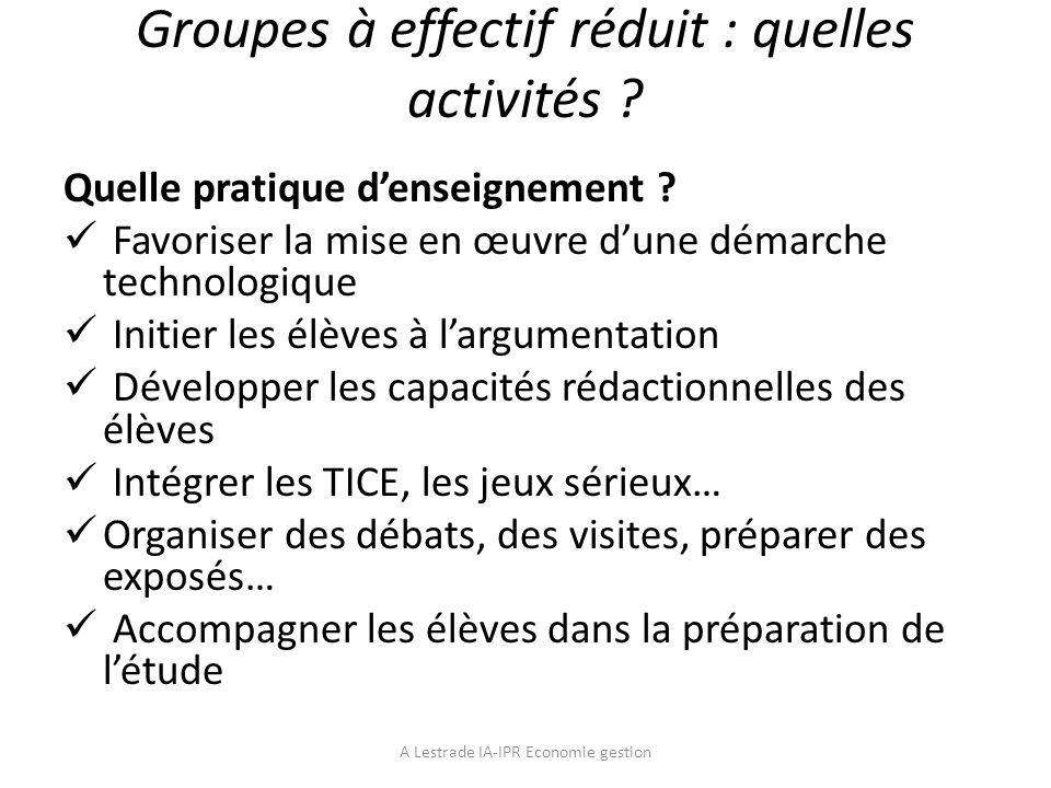 Groupes à effectif réduit : quelles activités ? Quelle pratique denseignement ? Favoriser la mise en œuvre dune démarche technologique Initier les élè