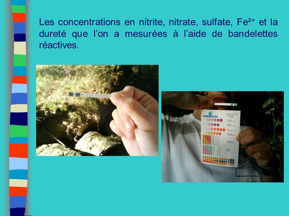 Les concentrations en nitrite, nitrate, sulfate, Fe² + et la dureté que lon a mesurées à laide de bandelettes réactives.
