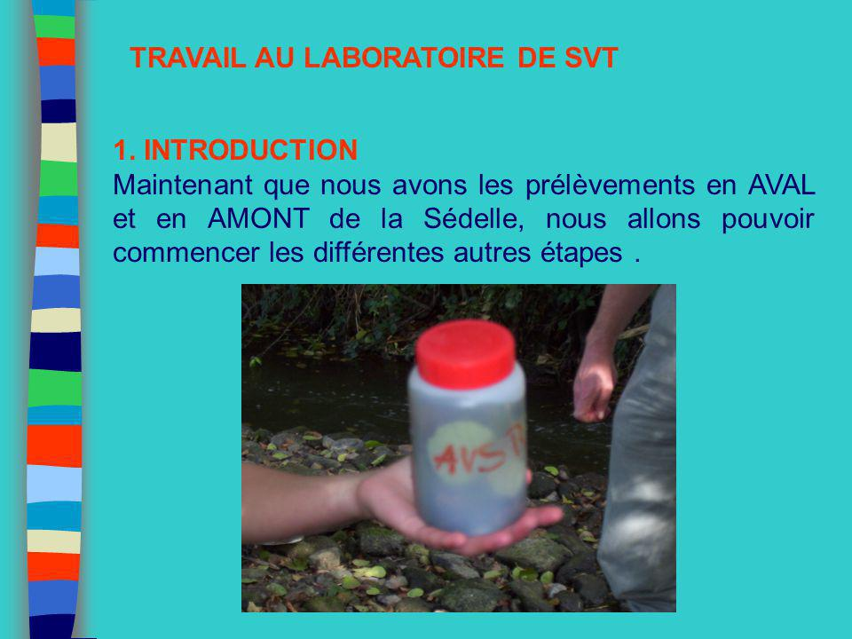 TRAVAIL AU LABORATOIRE DE SVT 1. INTRODUCTION Maintenant que nous avons les prélèvements en AVAL et en AMONT de la Sédelle, nous allons pouvoir commen