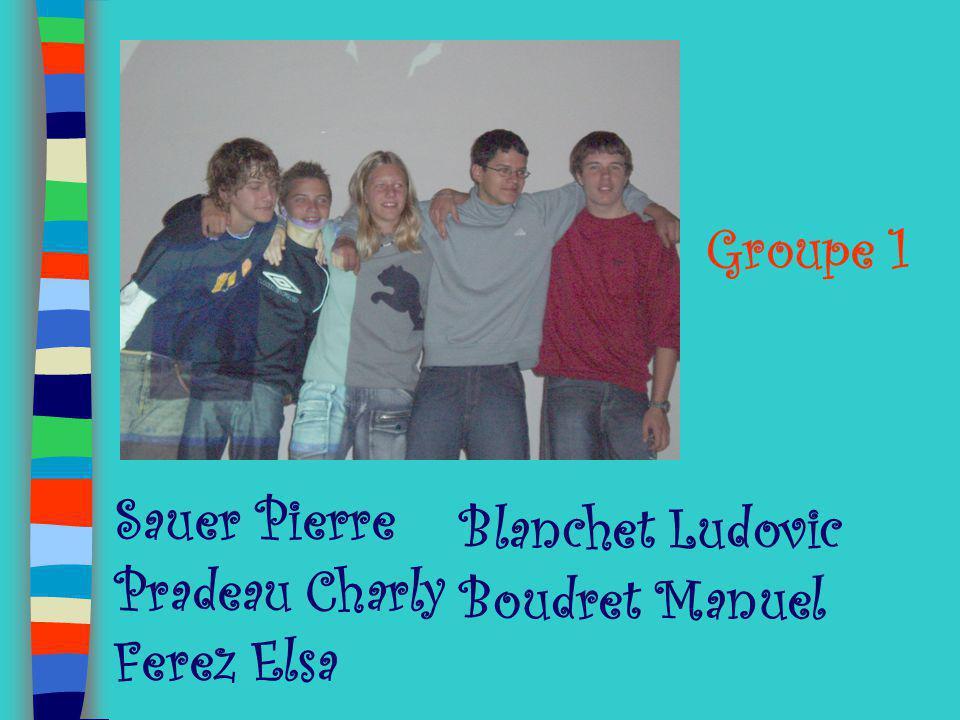 Groupe 1 Blanchet Ludovic Boudret Manuel Sauer Pierre Pradeau Charly Ferez Elsa