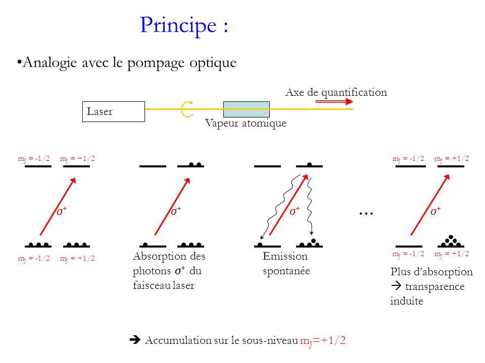 Principe : … Absorption des photons du faisceau laser Emission spontanée Plus dabsorption transparence induite Laser Axe de quantification Vapeur atomique m J = -1/2m J = +1/2 m J = -1/2m J = +1/2m J = -1/2m J = +1/2 m J = -1/2m J = +1/2 Accumulation sur le sous-niveau m J =+1/2 Analogie avec le pompage optique