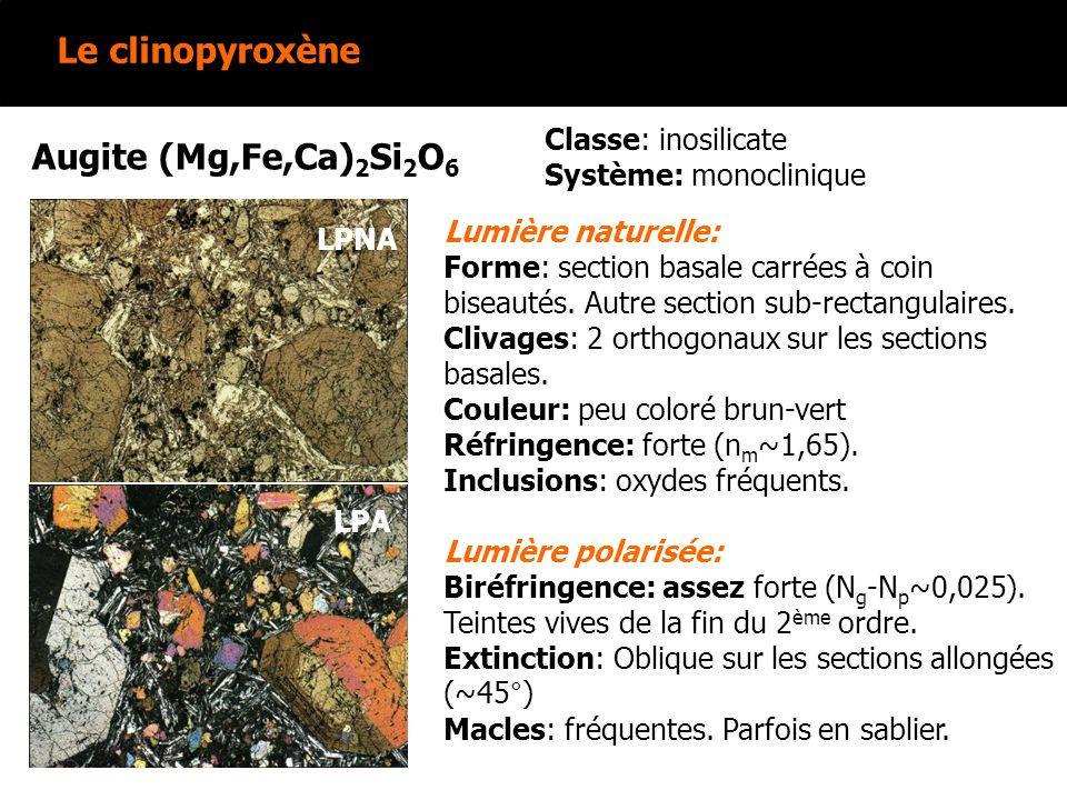 Le clinopyroxène Augite (Mg,Fe,Ca) 2 Si 2 O 6 Lumière naturelle: Forme: section basale carrées à coin biseautés. Autre section sub-rectangulaires. Cli