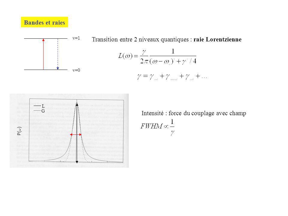 Bandes et raies v=0 v=1 Transition entre 2 niveaux quantiques : raie Lorentzienne L G Intensité : force du couplage avec champ
