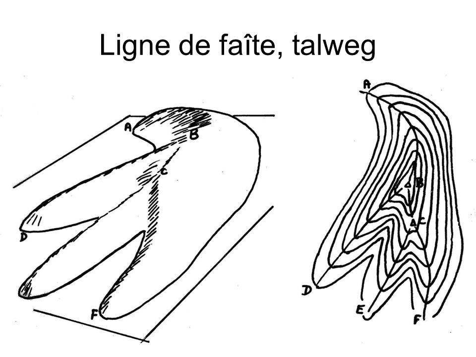 Ligne de faîte, talweg