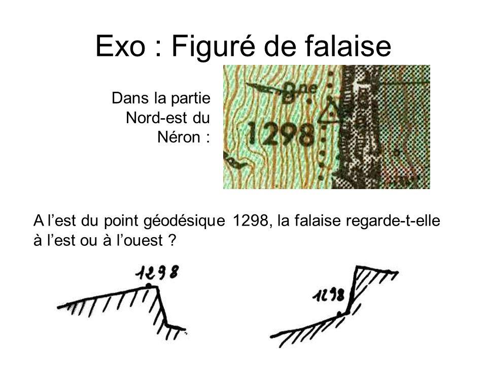Exo : Figuré de falaise Dans la partie Nord-est du Néron : A lest du point géodésique 1298, la falaise regarde-t-elle à lest ou à louest ?